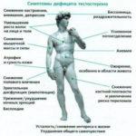 kak-povysit-testosteron-v-organizm-zhenshhiny_1